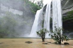 瀑布在密林 库存图片