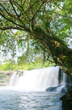 瀑布在密林 图库摄影