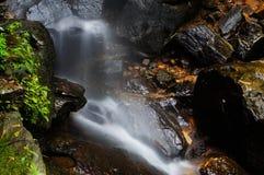 瀑布在山的森林里 图库摄影