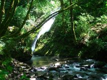 瀑布在峡谷 库存照片