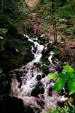 瀑布在接近Sohodol河的一个森林里 免版税库存照片