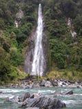 瀑布在新西兰西海岸的当地布什 免版税库存照片