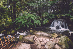瀑布在日本庭院里在弗罗茨瓦夫 库存照片