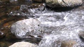 瀑布在春天 影视素材