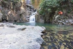 瀑布在有低谷和许多鱼的森林里 免版税库存照片