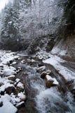瀑布在有积雪的树和降雪的山冬天森林里 库存图片