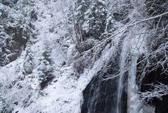 瀑布在有积雪的树和降雪的山冬天森林里 图库摄影