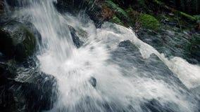 瀑布在有雪的森林里在岩石 股票录像