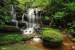 瀑布在森林亚洲里 免版税库存照片