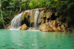 瀑布在森林国家公园 库存照片