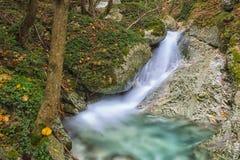 瀑布在森林在秋天与叶子颜色, Monte Cucc 库存照片