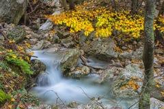 瀑布在森林在秋天与叶子颜色, Monte Cucc 免版税库存图片