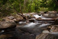 瀑布在森林里,在泰国北部 图库摄影