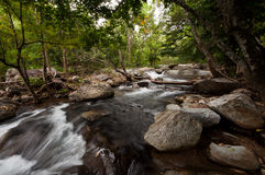 瀑布在森林里,在泰国北部 库存照片
