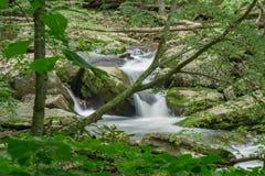 瀑布在森林里- 3 免版税库存照片
