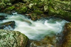 瀑布在森林里- 4 免版税库存照片