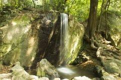 瀑布在森林里 图库摄影