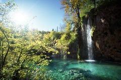 瀑布在森林, Plitvice湖里 库存图片