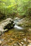 瀑布在森林 免版税库存照片