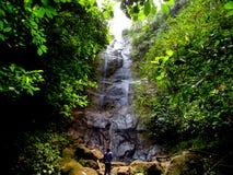 瀑布在森林Ciamis西爪哇省里 免版税图库摄影