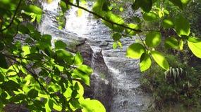 瀑布在森林Ciamis西爪哇省里 免版税库存照片