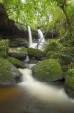 瀑布在泰国的森林里 图库摄影