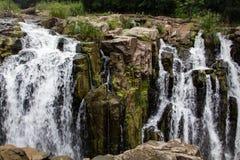 瀑布在泰米尔纳德邦 库存照片