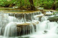 瀑布在深密林 免版税库存照片