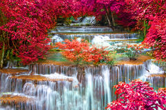 瀑布在深雨林密林(Huay Mae Kamin瀑布) 免版税库存图片