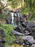 瀑布在澳大利亚雨林里 免版税库存照片