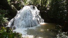 瀑布在热带的森林里 股票录像