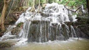 瀑布在热带的森林里 影视素材