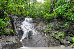 瀑布在热带雨林密林。泰国自然 库存图片