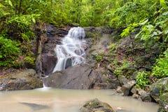 瀑布在热带雨林密林 图库摄影