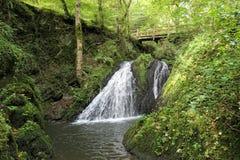 瀑布在狂放的Endertal谷的狂放的swoosh在eifel雷希奥 免版税库存图片