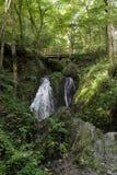 瀑布在狂放的Endertal谷的狂放的swoosh在eifel雷希奥 图库摄影