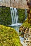 瀑布在疯狂的玛丽河的, Belasitsa山,保加利亚冬天森林里 库存照片