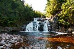 瀑布在秋天季节的一个森林里 免版税图库摄影