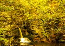瀑布在秋天森林里 图库摄影