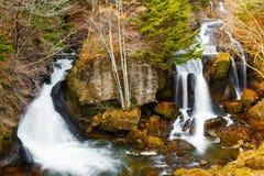 瀑布在秋天森林里 免版税库存照片