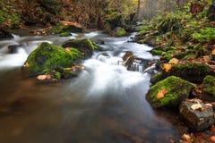 瀑布在秋天森林里 库存照片