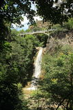 瀑布在第比利斯植物园,乔治亚里 免版税库存照片