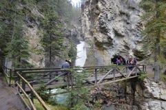 瀑布在约翰逊峡谷 免版税库存图片