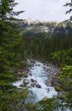 瀑布在约翰逊峡谷 免版税库存照片