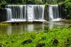 瀑布在考艾岛夏威夷在绿色豪华的密林 库存图片