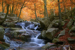 瀑布在自然公园蒙塞尼(巴塞罗那西班牙) 免版税图库摄影