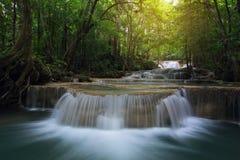瀑布在自然深森林里 库存照片