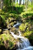 瀑布在英国乡下 库存图片