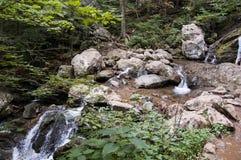 瀑布在蓝岭山脉 图库摄影