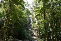 瀑布在酸值的Pangan森林里 免版税库存照片